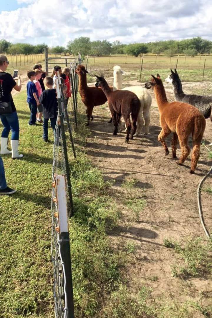 Homeschool group visits