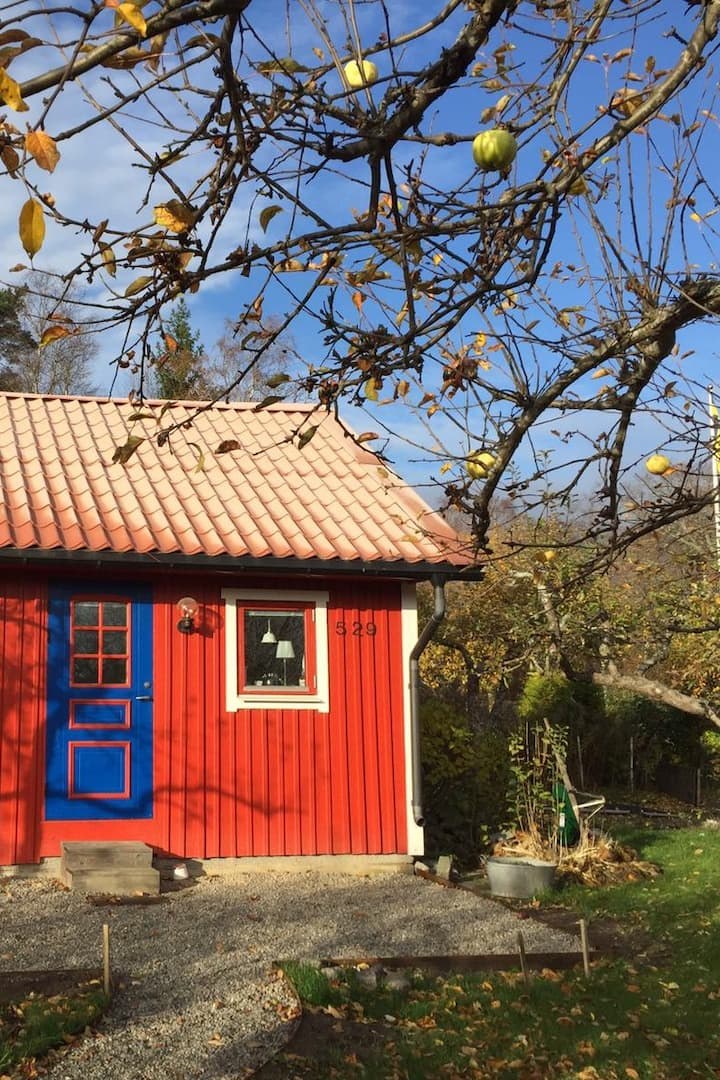 Another example of a Swedish cottage!