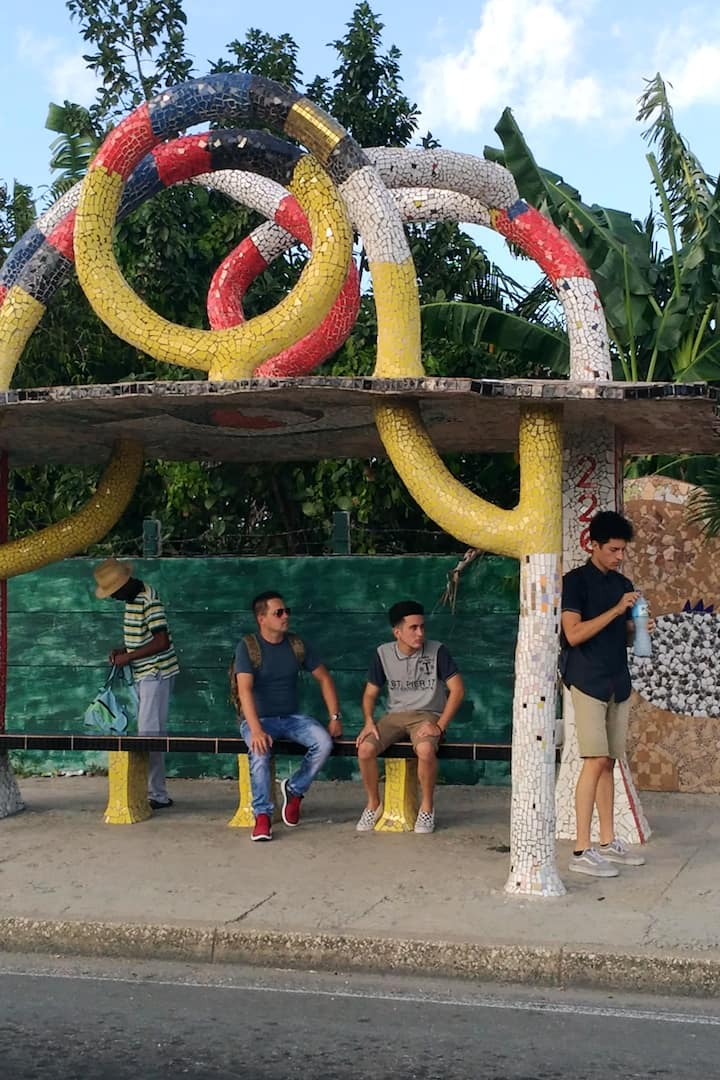 esperando el omnibus