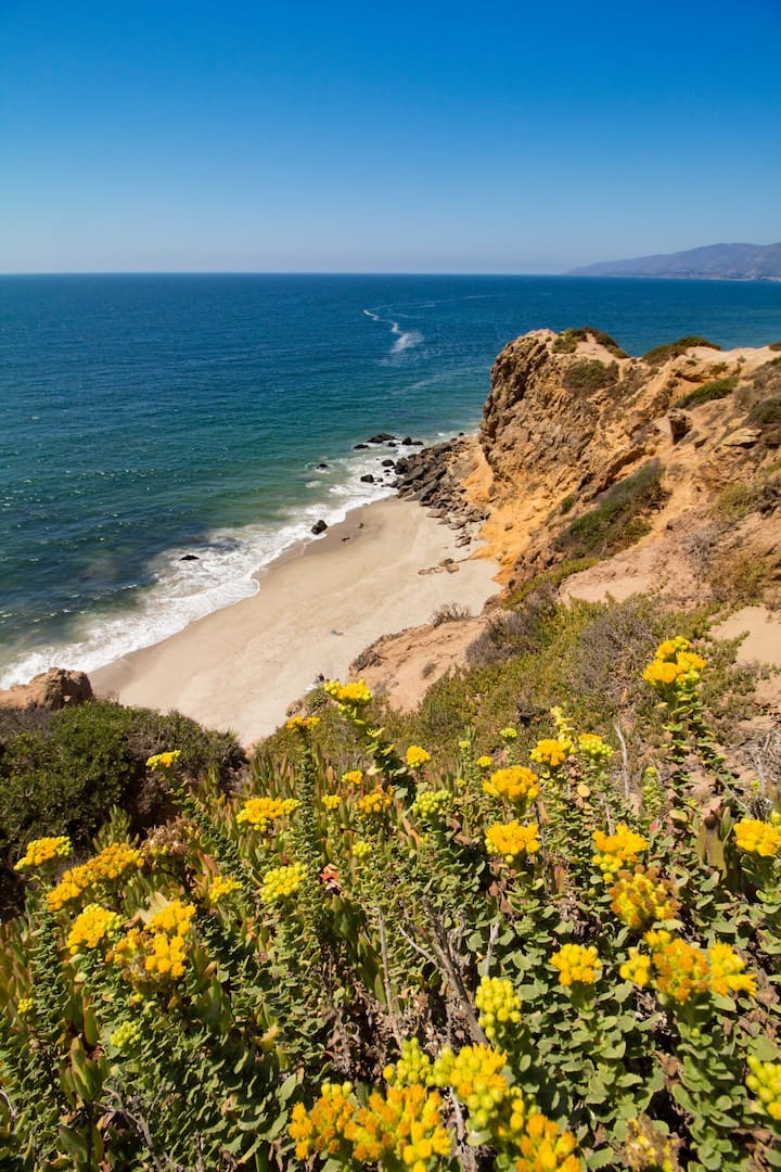The Most Wild & Beautiful Malibu Beaches