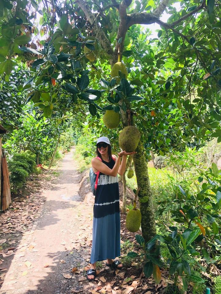 In Mekong Delta