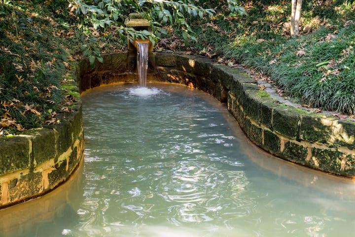 O melhor spa do Mundo fica nos Açores!!