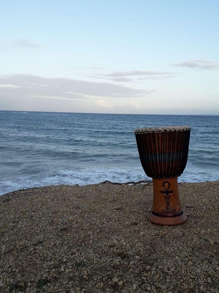 L'instrument