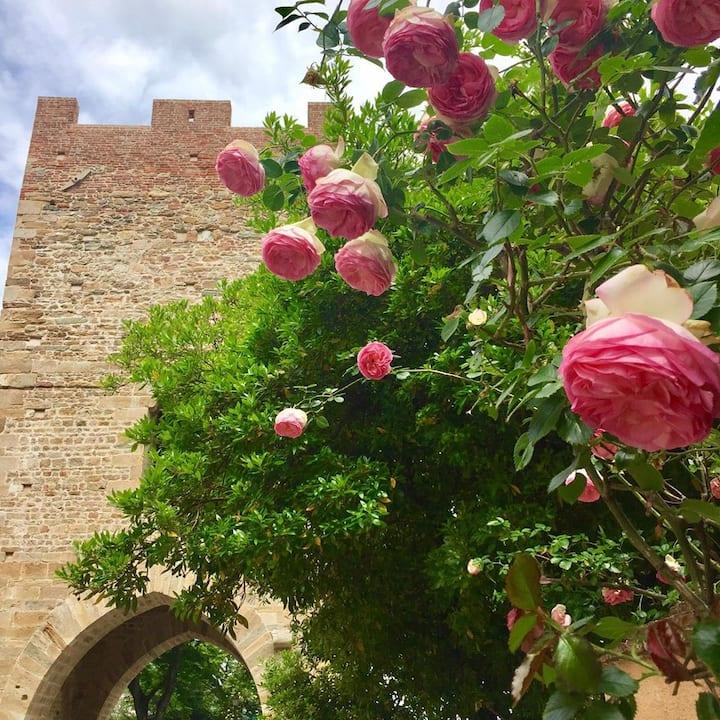 Vicopisano Torre delle Quattro Porte