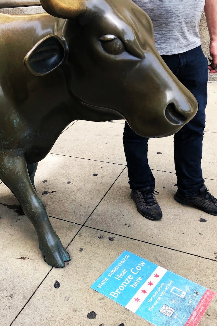 Learn the history of cows in Chicago