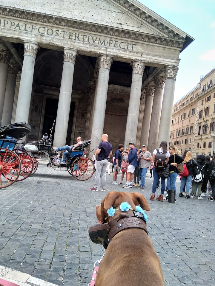 Flower power at the Pantheon!