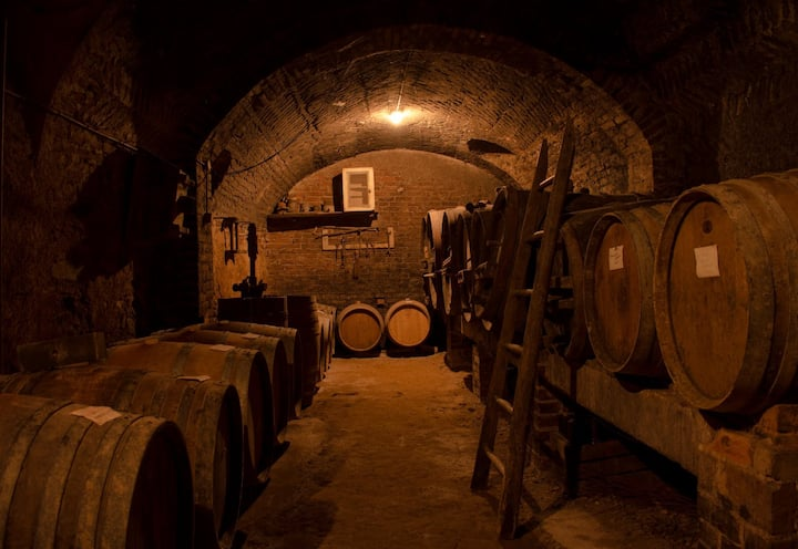 Our old cellar