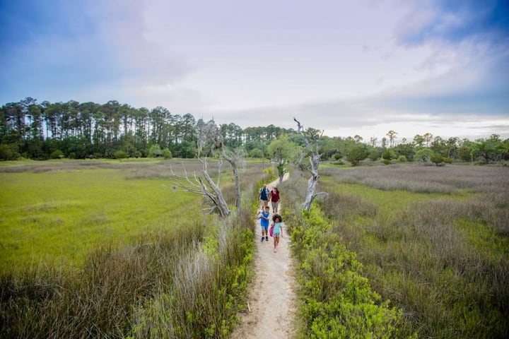 Trail at Skidaway Island