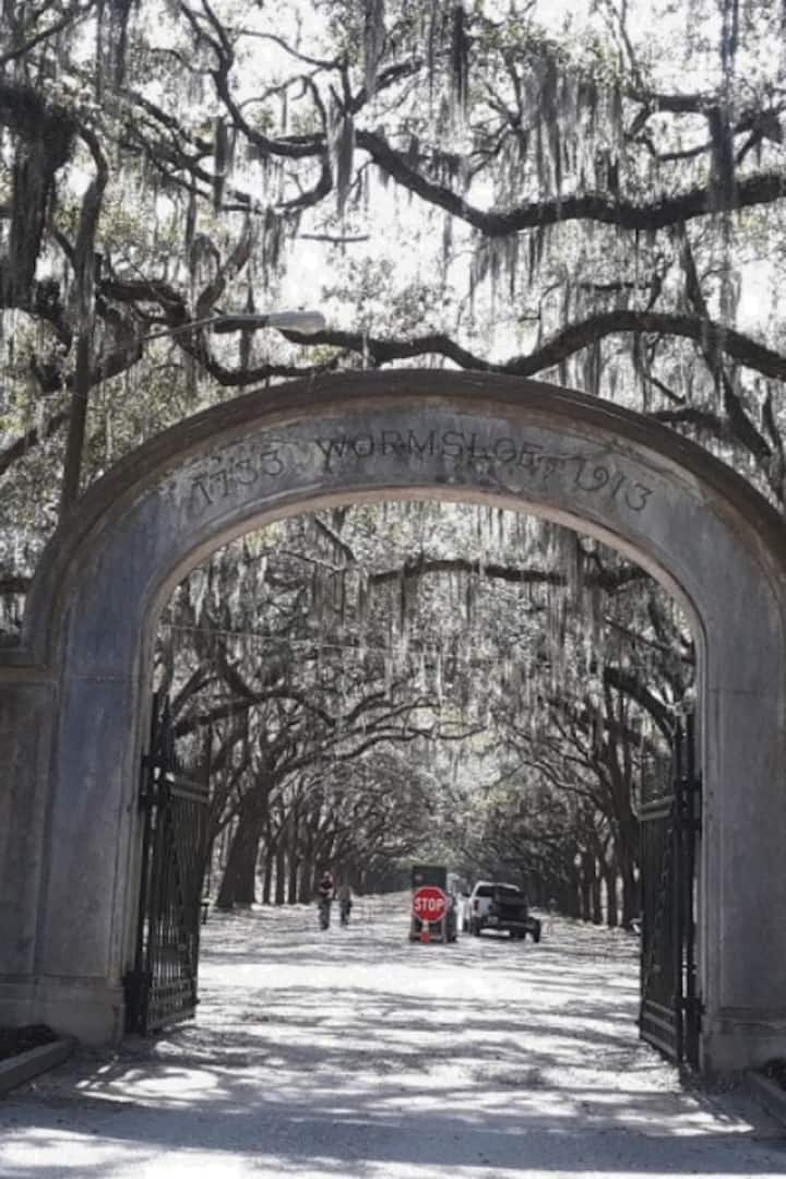 Entrance to Wormsloe and its oaks trees