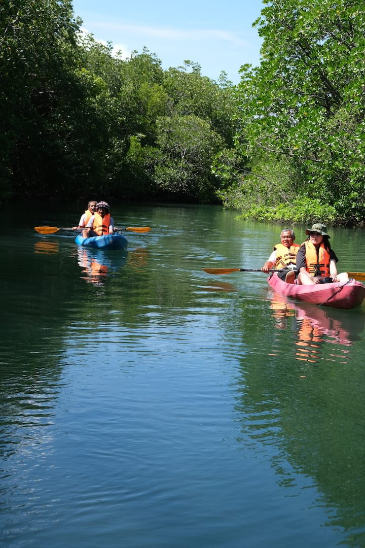 Kayaking along Nature Route