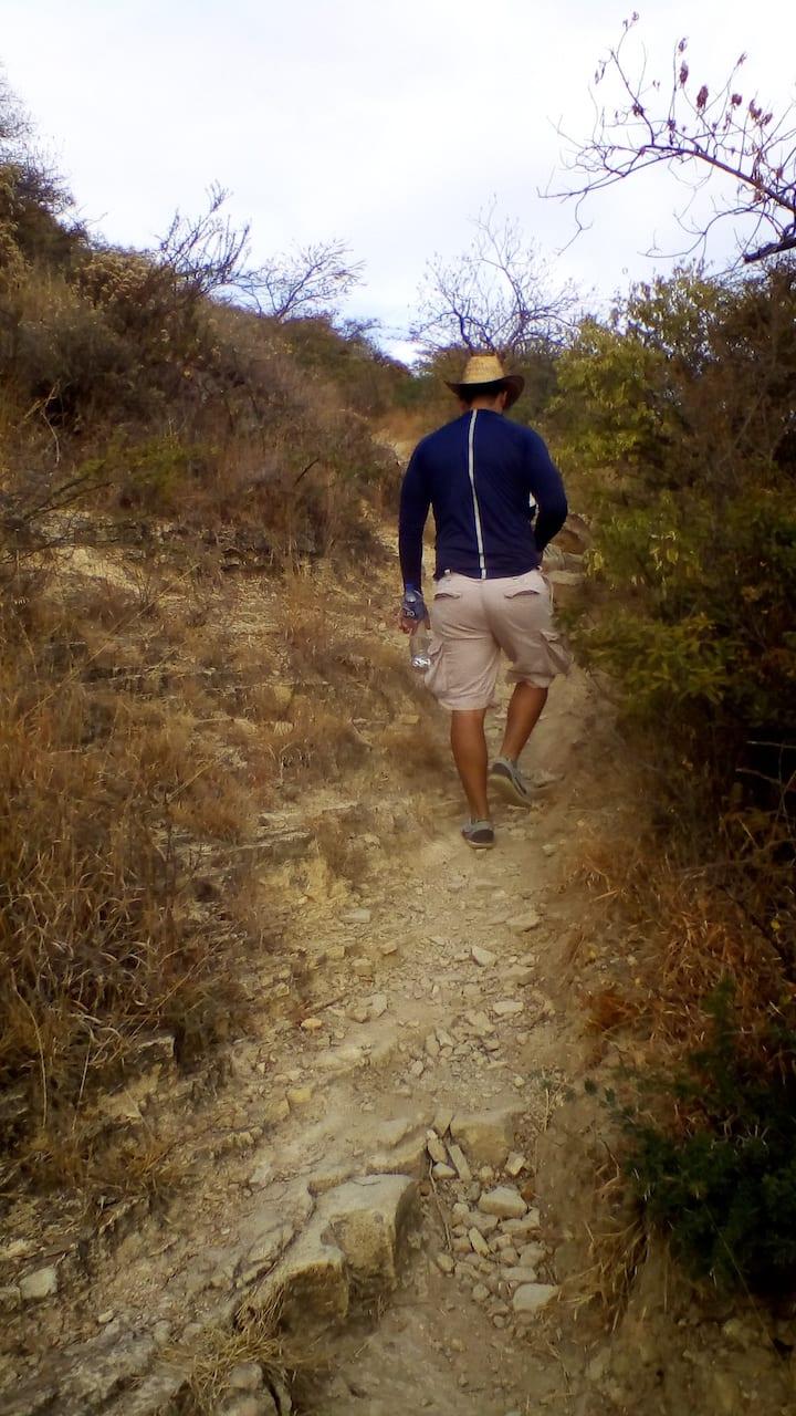 Camino Rocoso. Rocky Road
