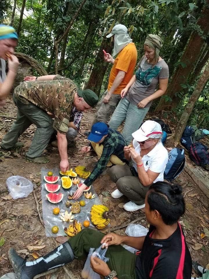 Lunch in the jungle