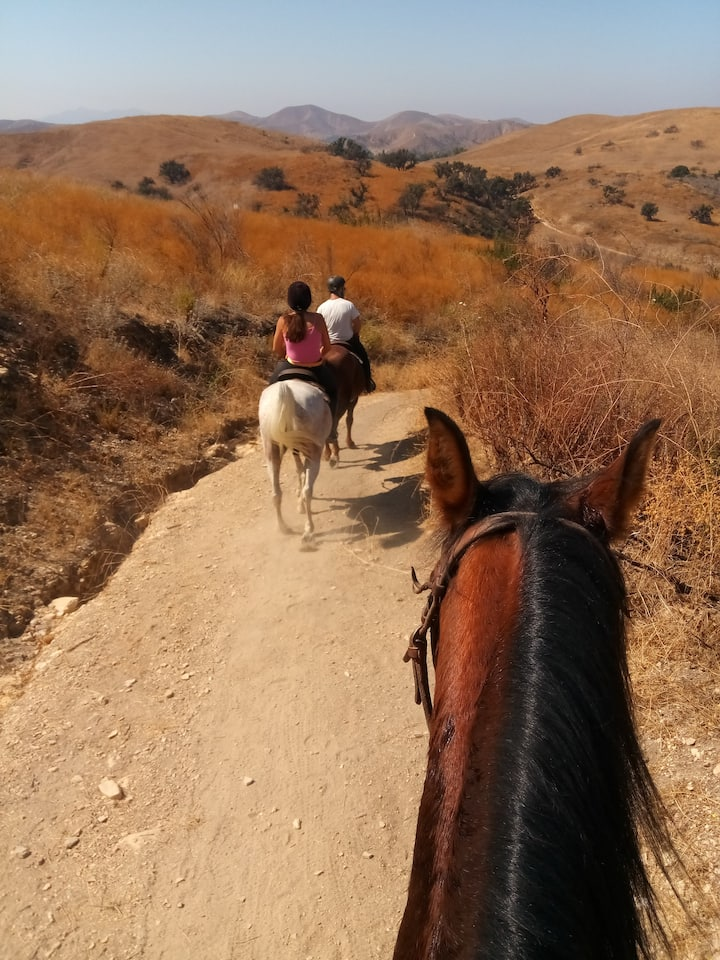 Riding in the canyon