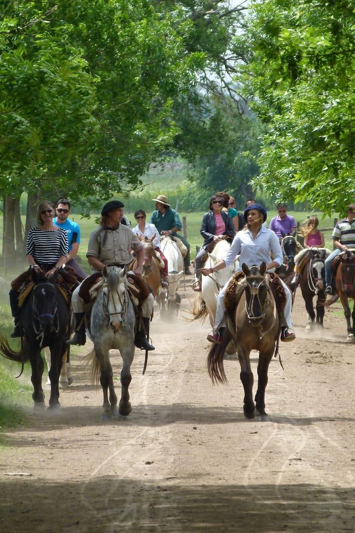 Gaucho style ride