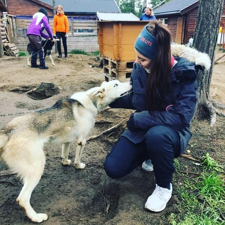 Our summer guests cuddling with huskies