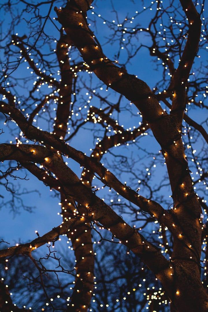 Christmas lights in Reykjavík