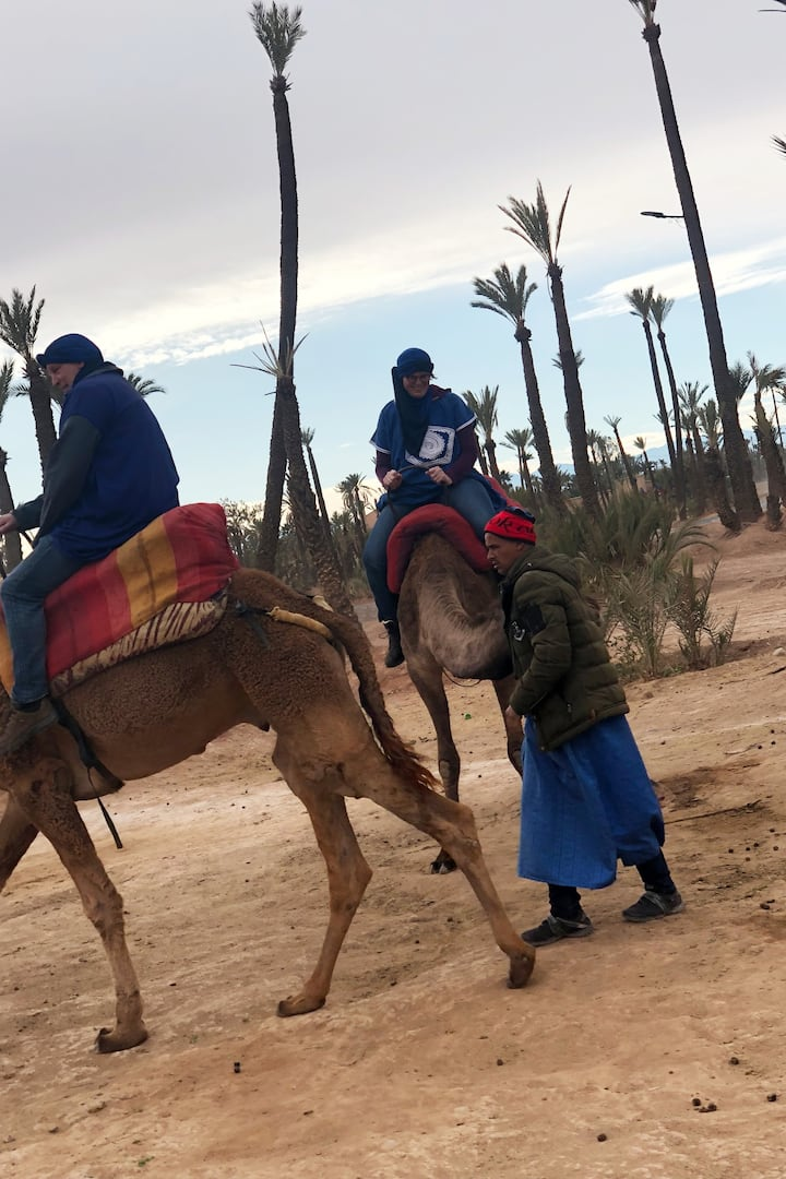 Cheap experience camel ride