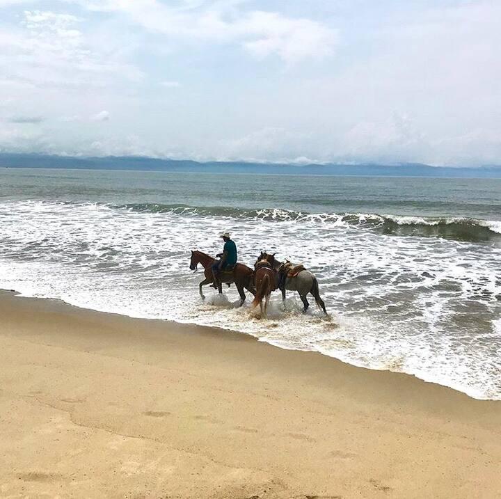 Horse riding at the beach! (seasonal)
