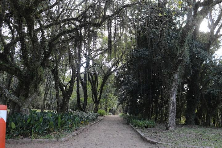 Jardim Botânico de Porto Alegre