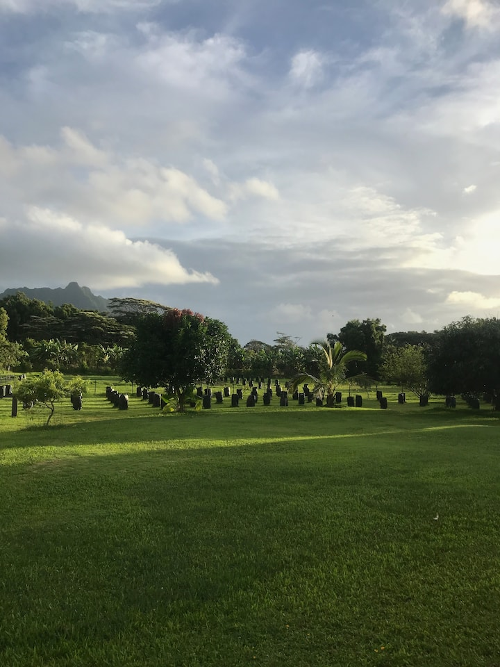 Native Hawaiian Organic Chocolate Farm