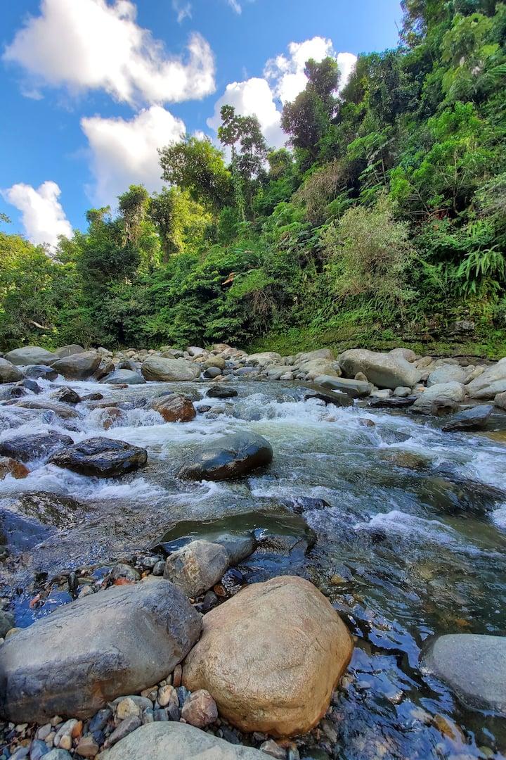 Mameyes River