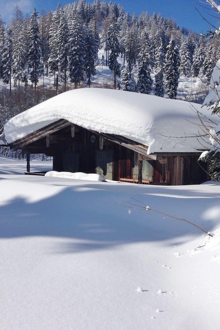 100 cm Neuschnee am Bichler See