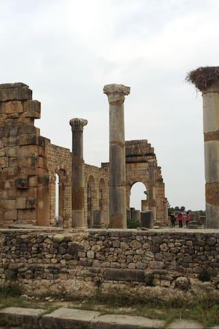 Kulttuuri ja historia