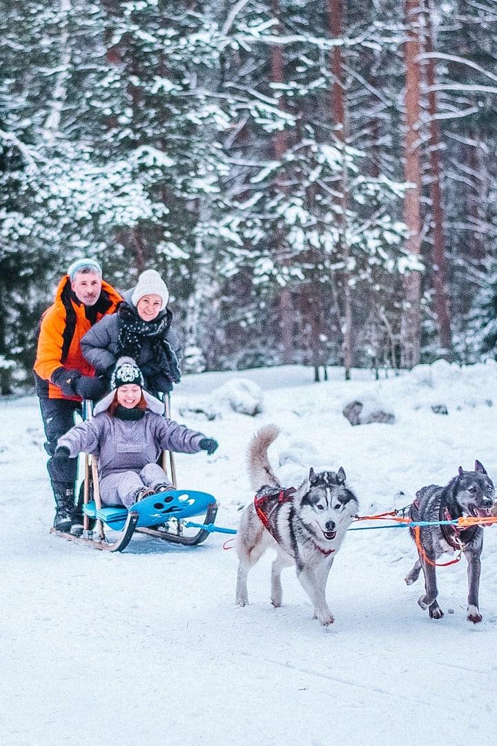 Dog-sledding with a Kayur