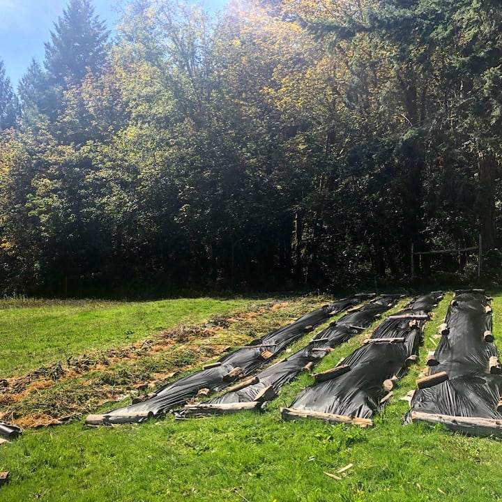 Learn how we build future beds!