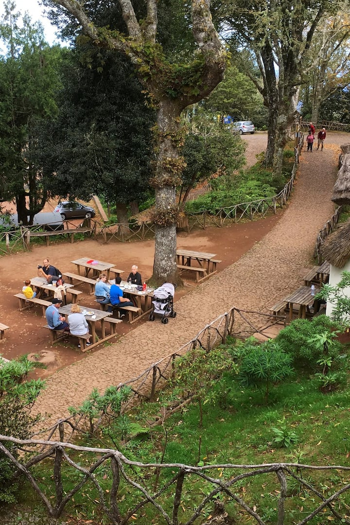 Picnic area in the forest