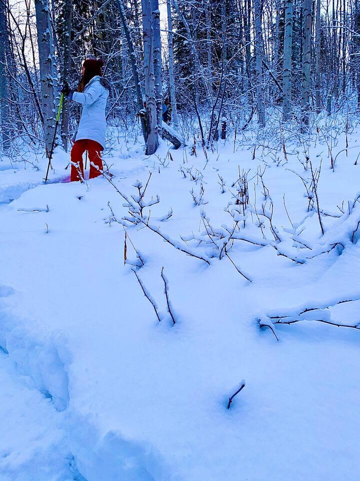 Snowshoeing Alaska