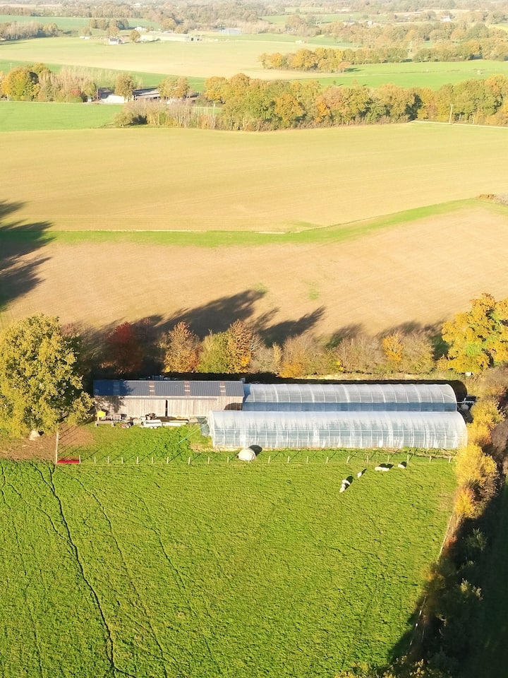 Vue aérienne de la ferme de spiruline