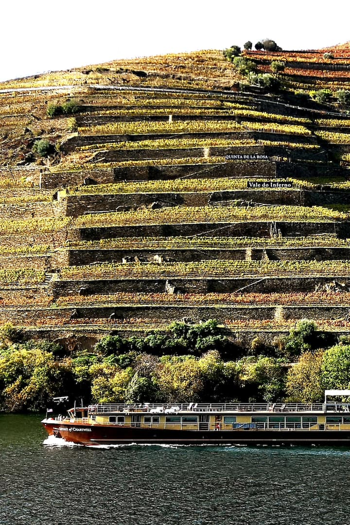 Douro Terraces with vineyards...