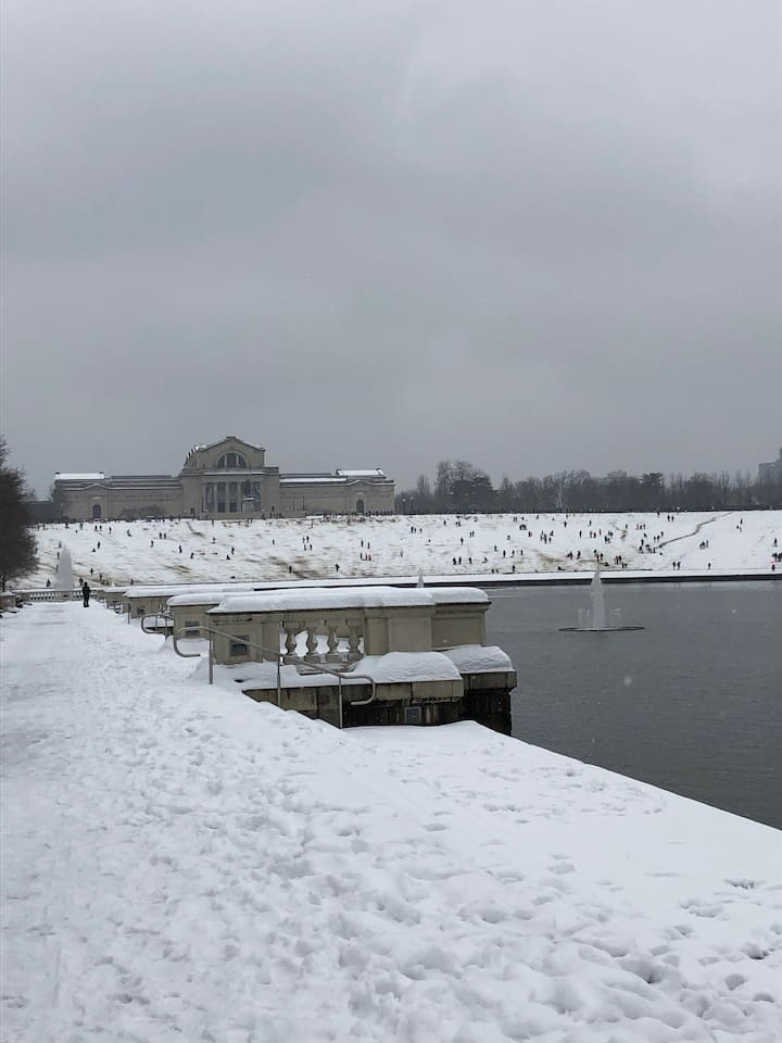 Winter in the park - sledding!