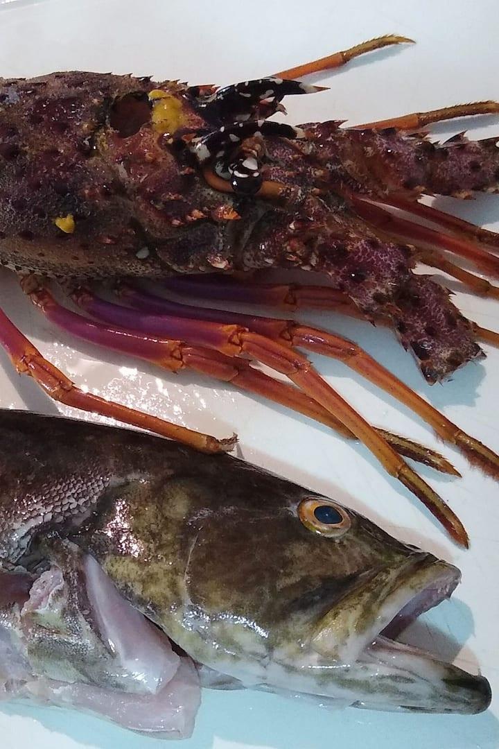 Lagosta (lobster) e peixe Badejo