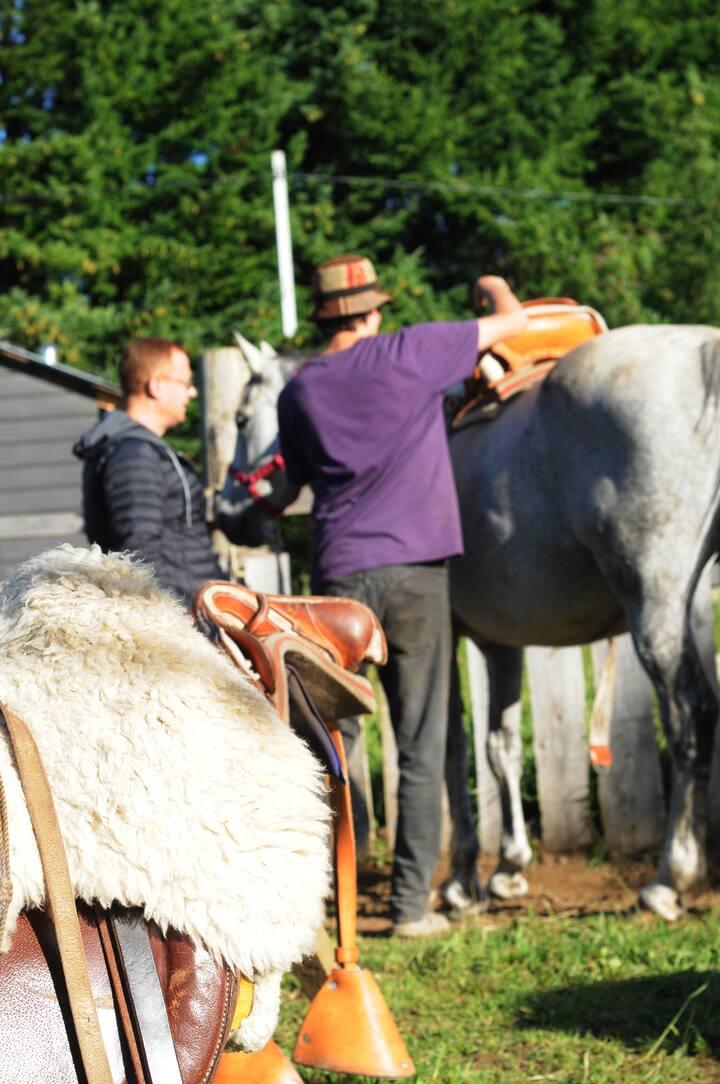 Preparar el caballo conociendo el oficio