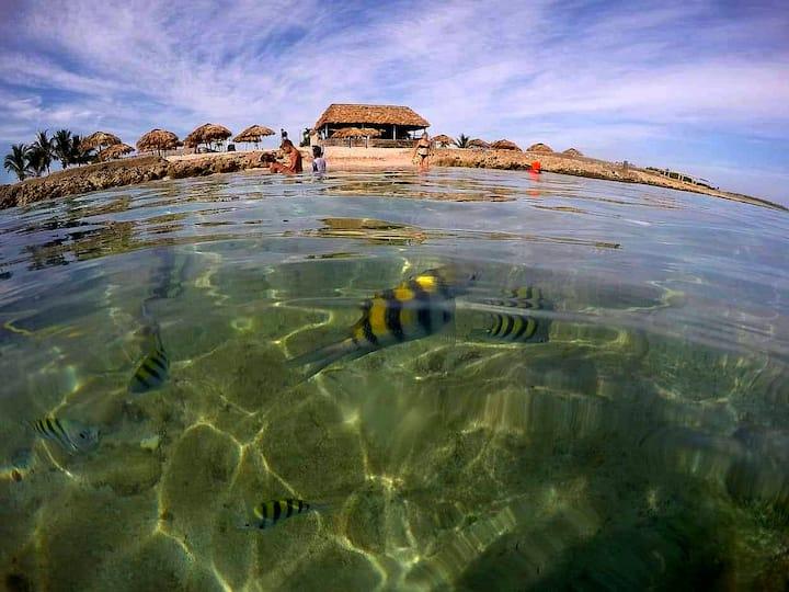 Snorkeling tours from Varadero and Havan