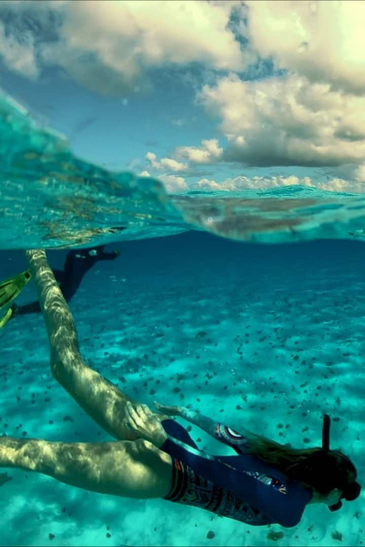 snorkel malta with damsel fish