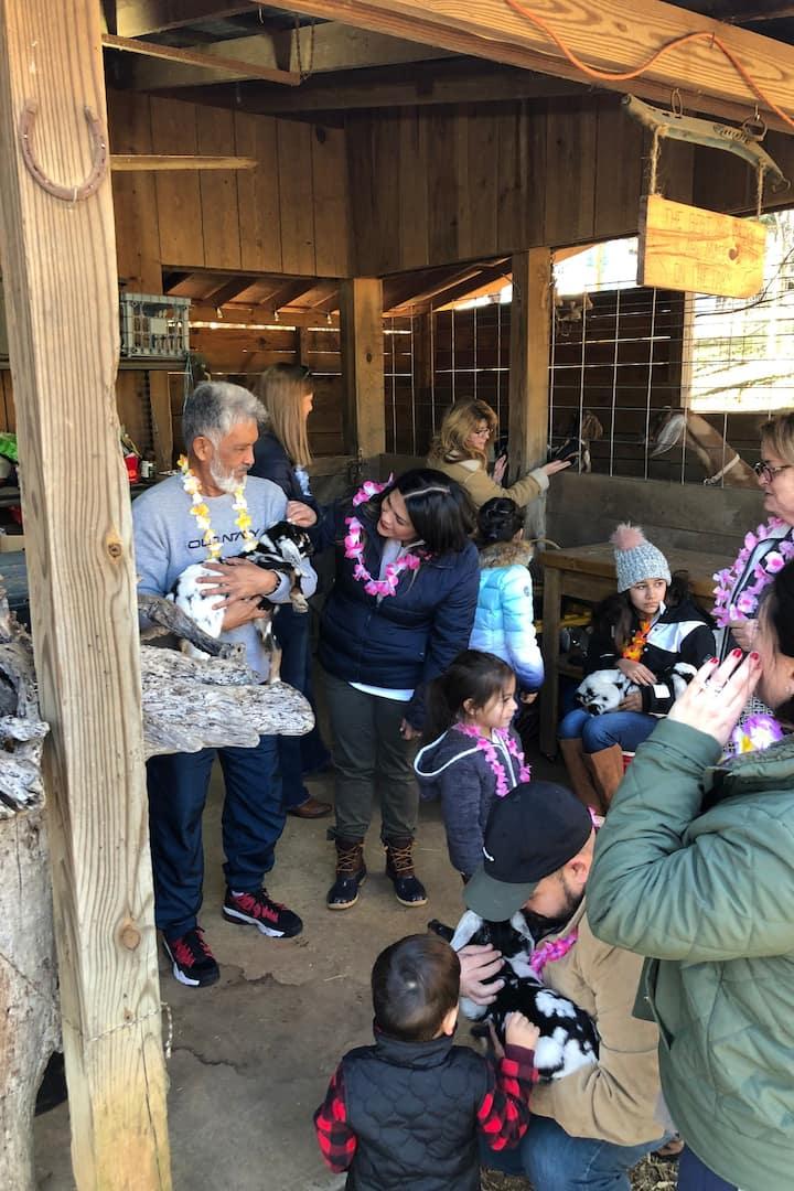 Goat kids were very popular!
