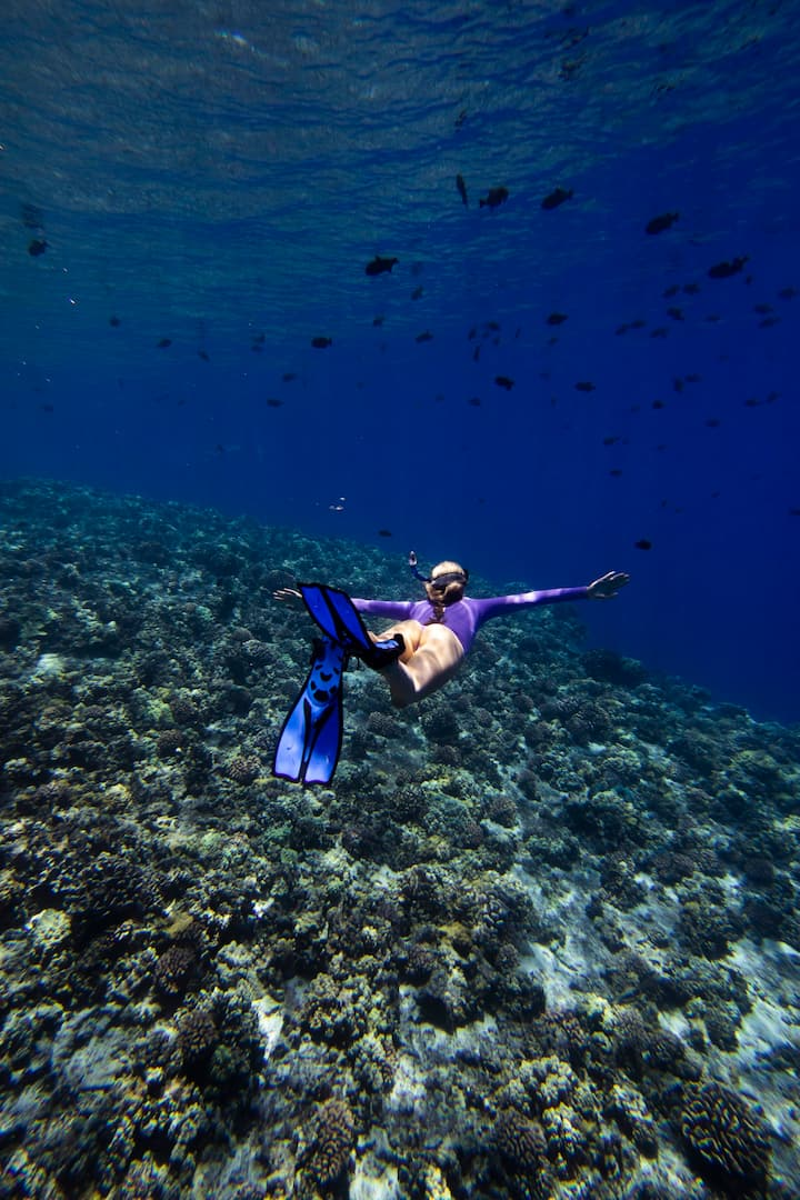 Swim with 100s of Tropical Fish