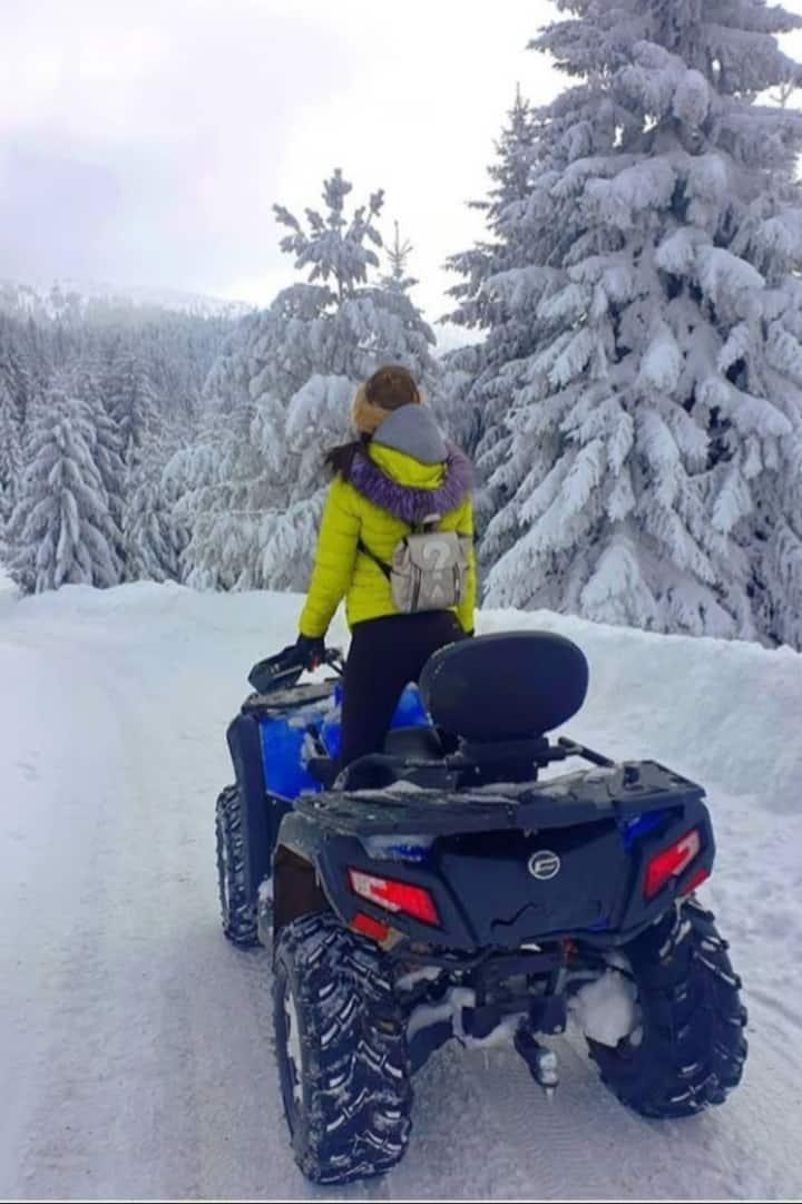 Drive snowmobile