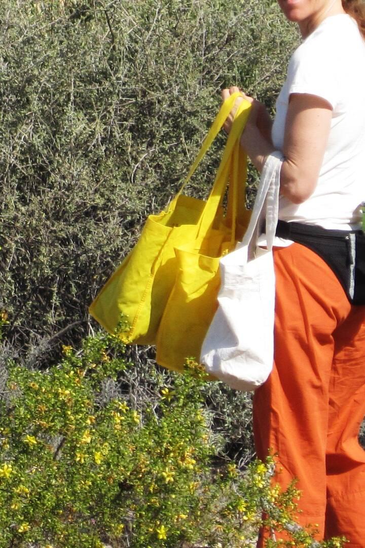 Sonoran Desert Property