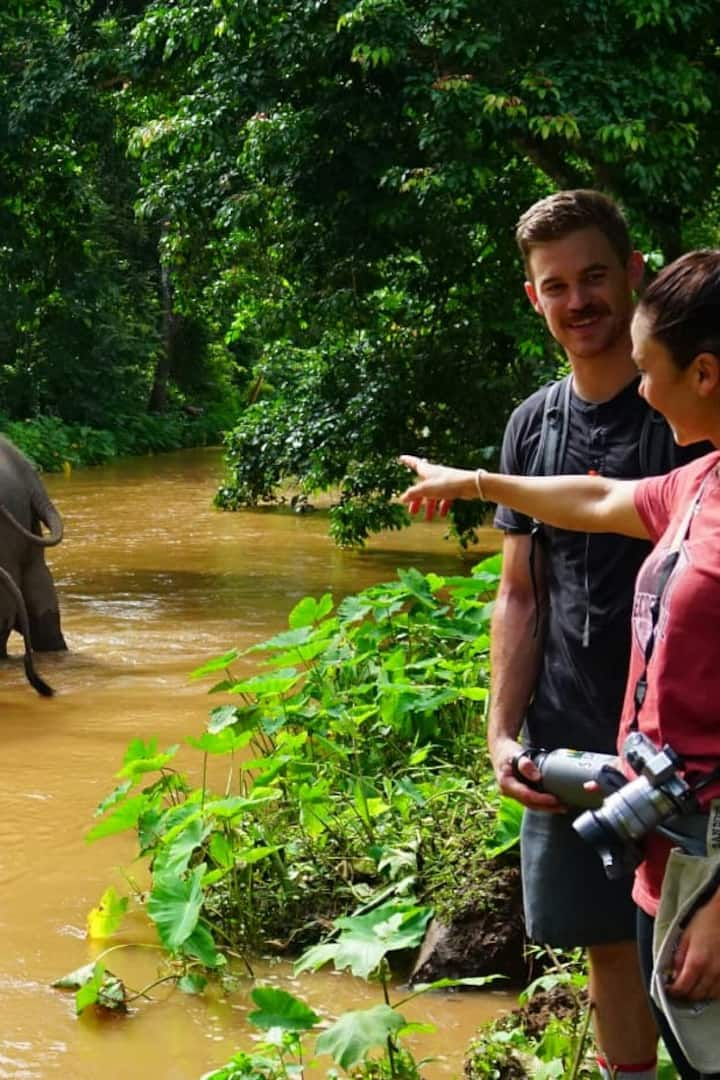 Our guests meeting the elephants