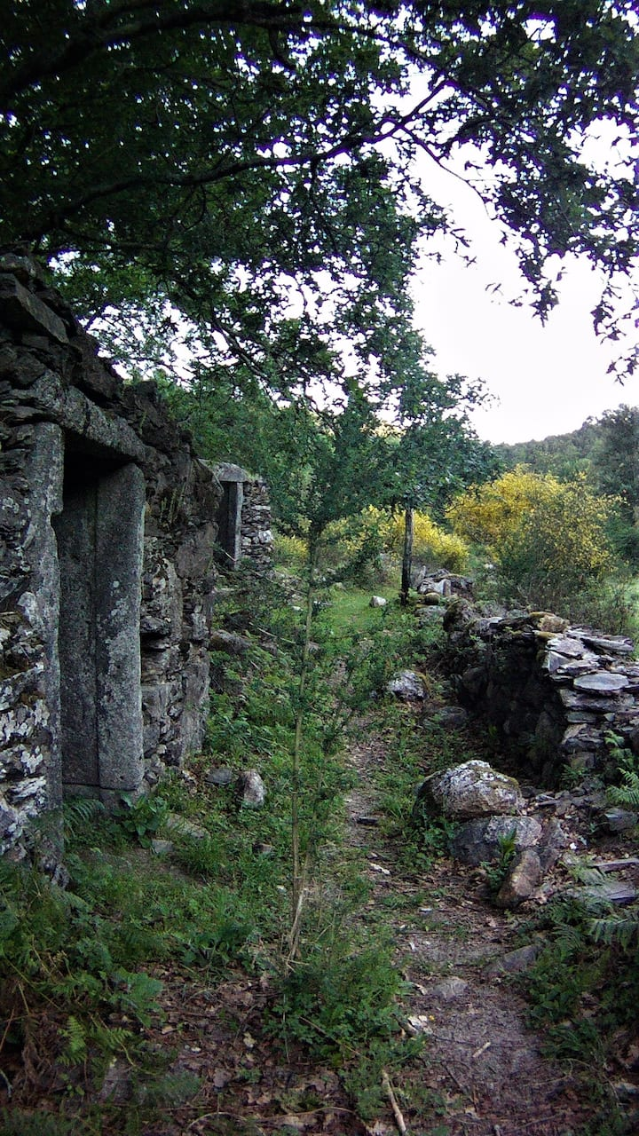 Ruins along the trail