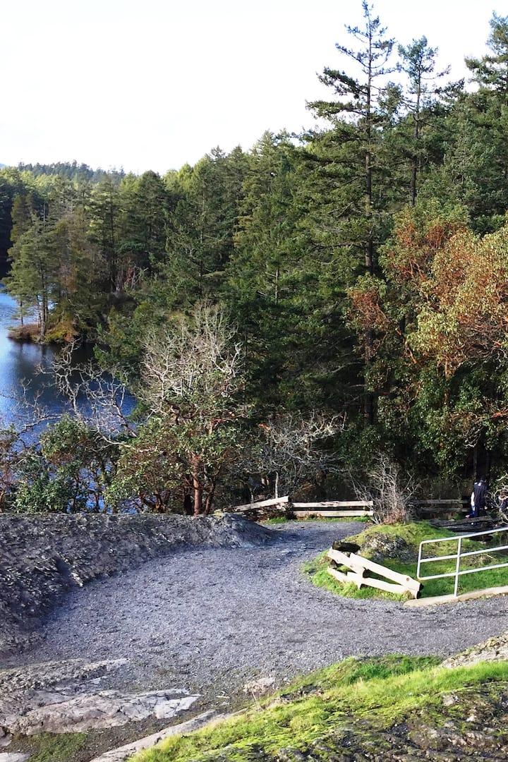Scenic lakeside trail