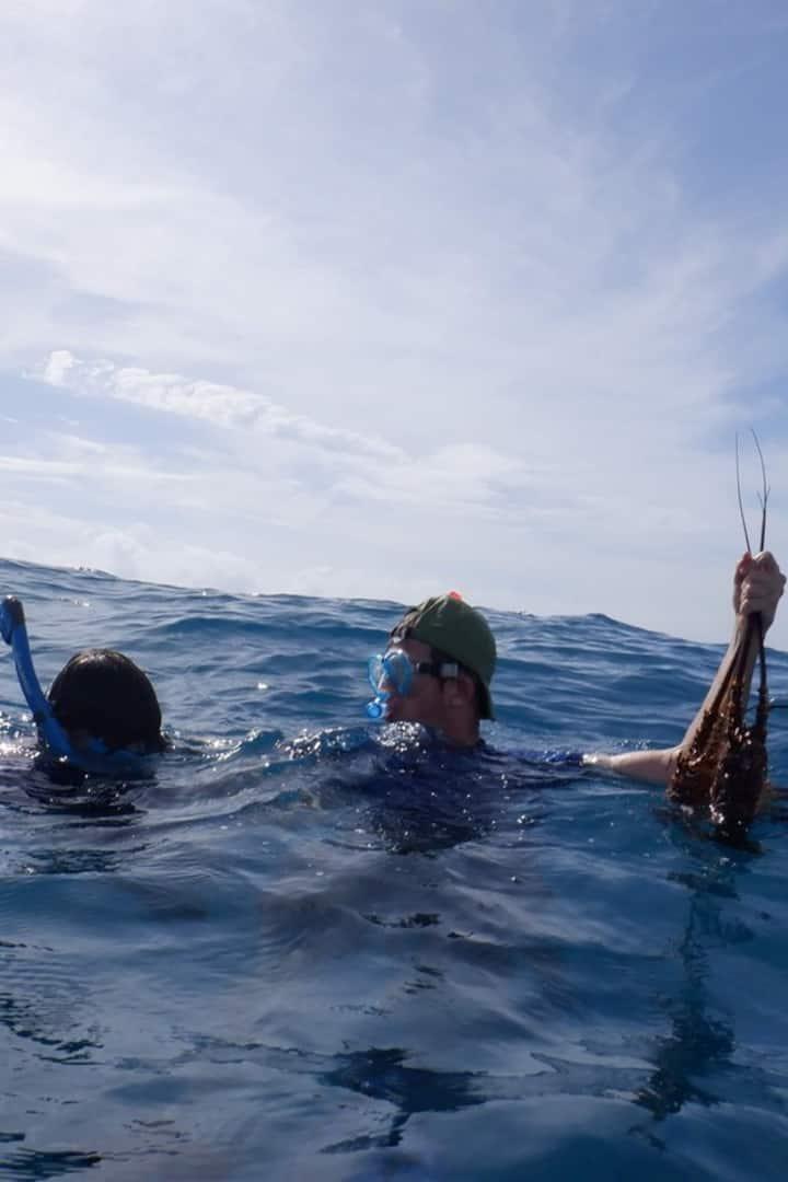 Amigos practicando con  el snorkelin