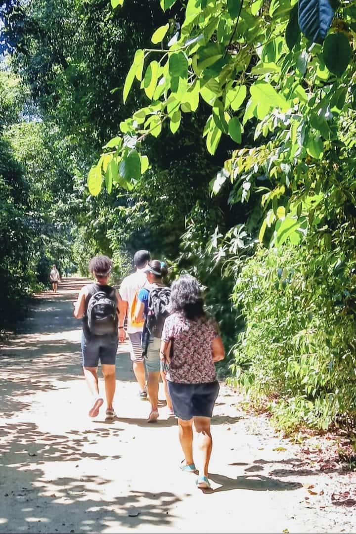 Trilha do Bosque da Freguesia