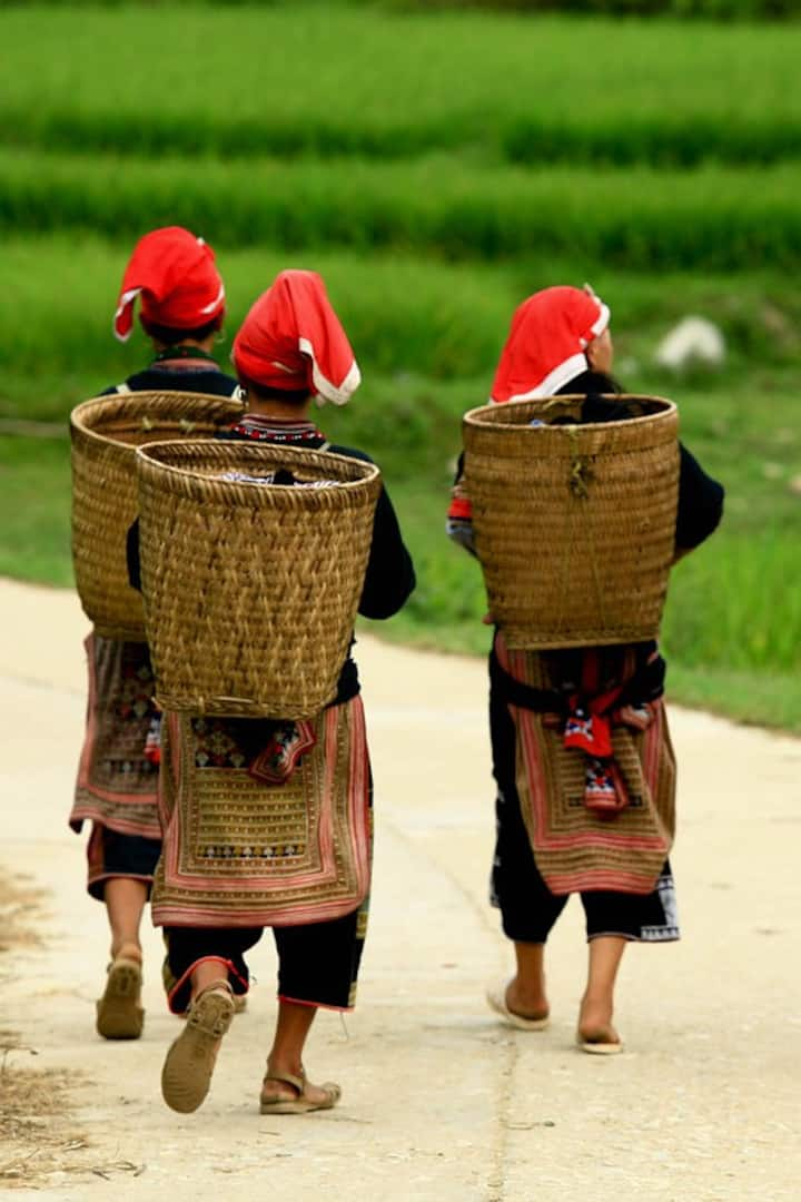 Red Dao women come back home