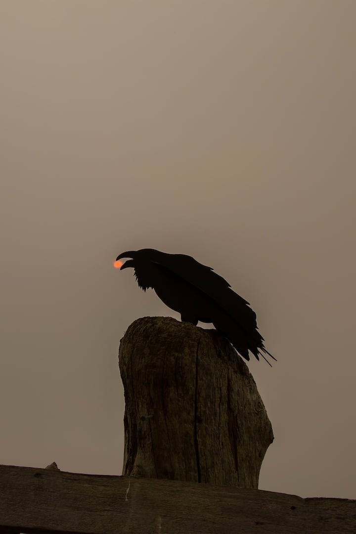 Raven Steals the Smoky Sun
