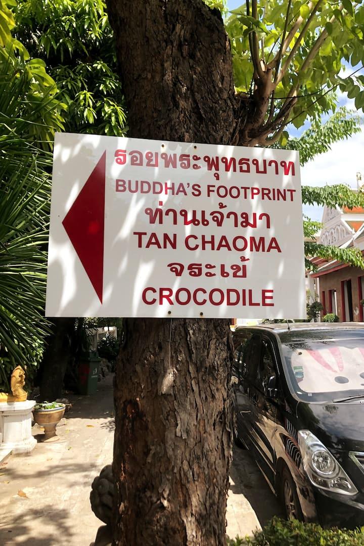 Crocodile Temple